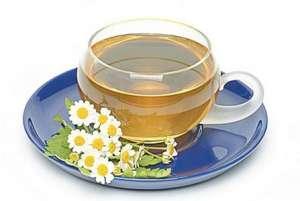菊花茶有副作用吗