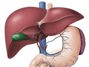导致人们患上肝癌的各种病因