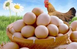 鸡蛋如何排毒