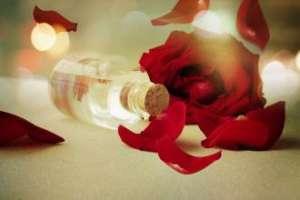 玫瑰精油注意事项