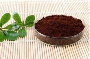 灵芝孢子粉的食用方法介绍