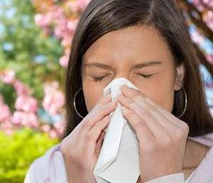 五味子能治哮喘吗