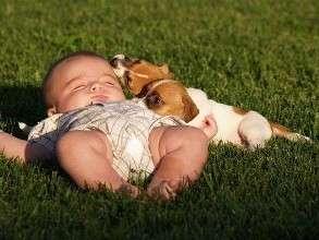 新生儿的正确睡姿