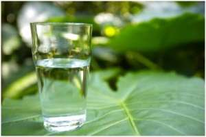 喝水要适量不可过多