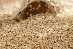 糙米的功效有什么呢