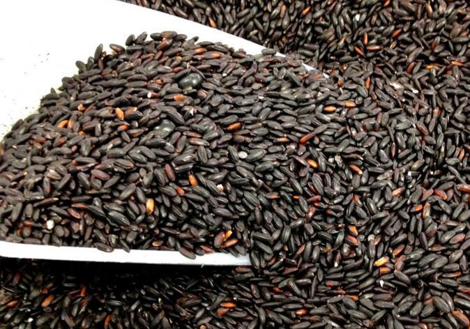 如何食用黑米