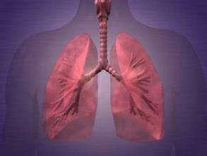 导致慢性支气管炎发生的原因