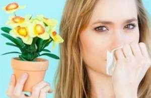 治疗过敏性鼻炎的偏方有哪些呢