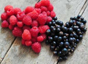 晚上吃哪种水果容易减肥