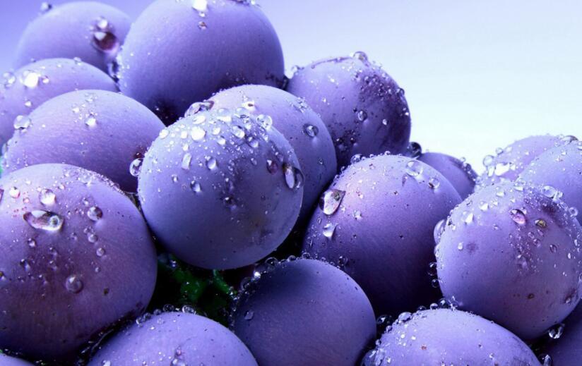 葡萄的功效与作用是什么呢