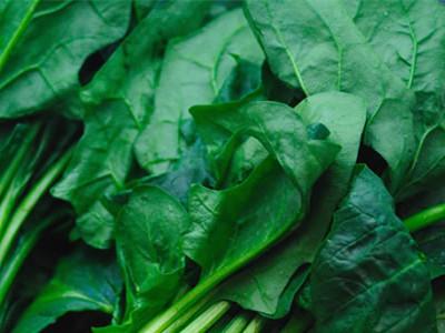 菠菜的营养价值及功效