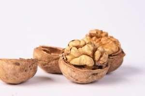 养肝补肾的要补充哪些营养