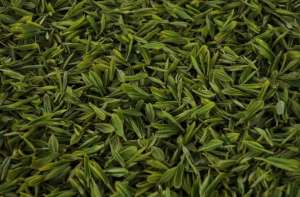绿茶常见的7个疑问大揭秘