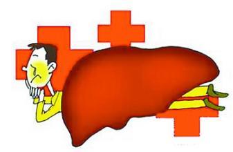 生活中患丙肝的病因有哪些