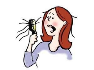 怎样预防脱发