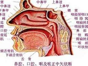 鼻咽癌的眼部病变的护理