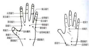 拇指掌指关节尺侧侧副韧带损伤的饮食禁忌